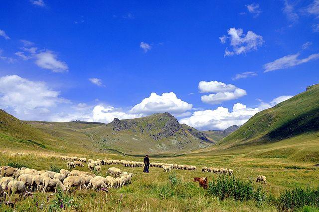 Visit Kosovo